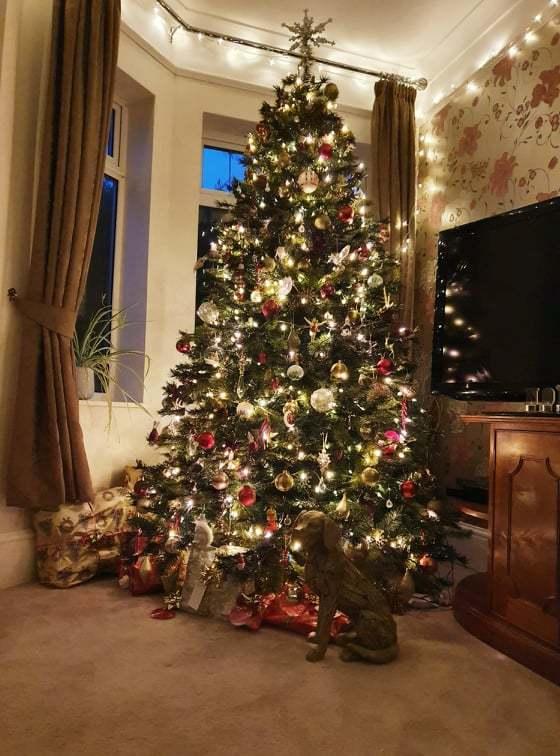 christmas stress mandie holgate